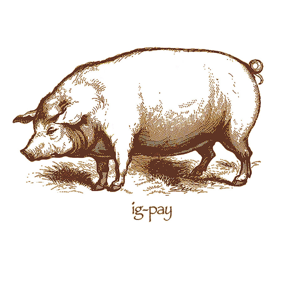 Pig Latin Shirt